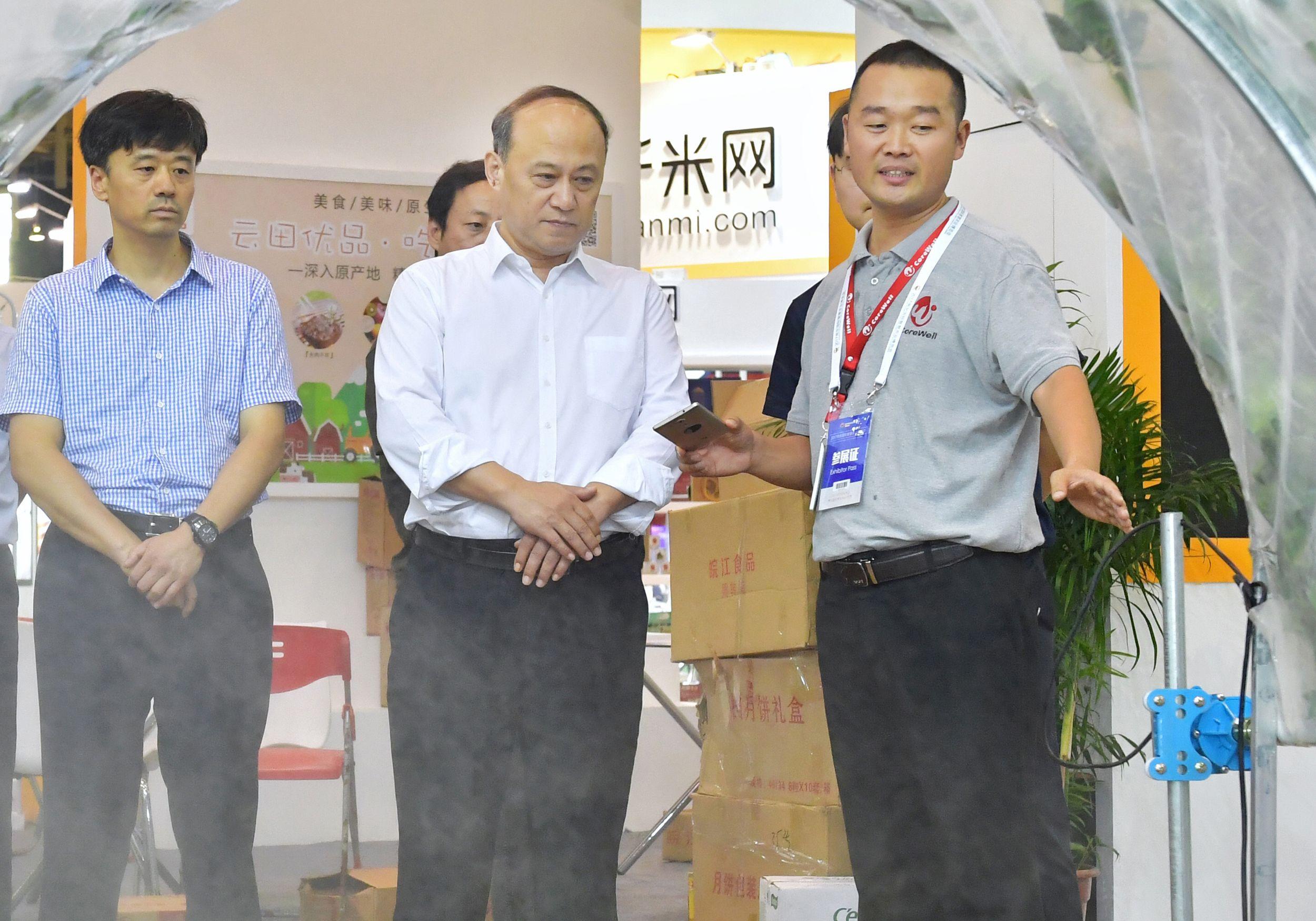 江苏省宣传部周琪部长听苗总工作汇报