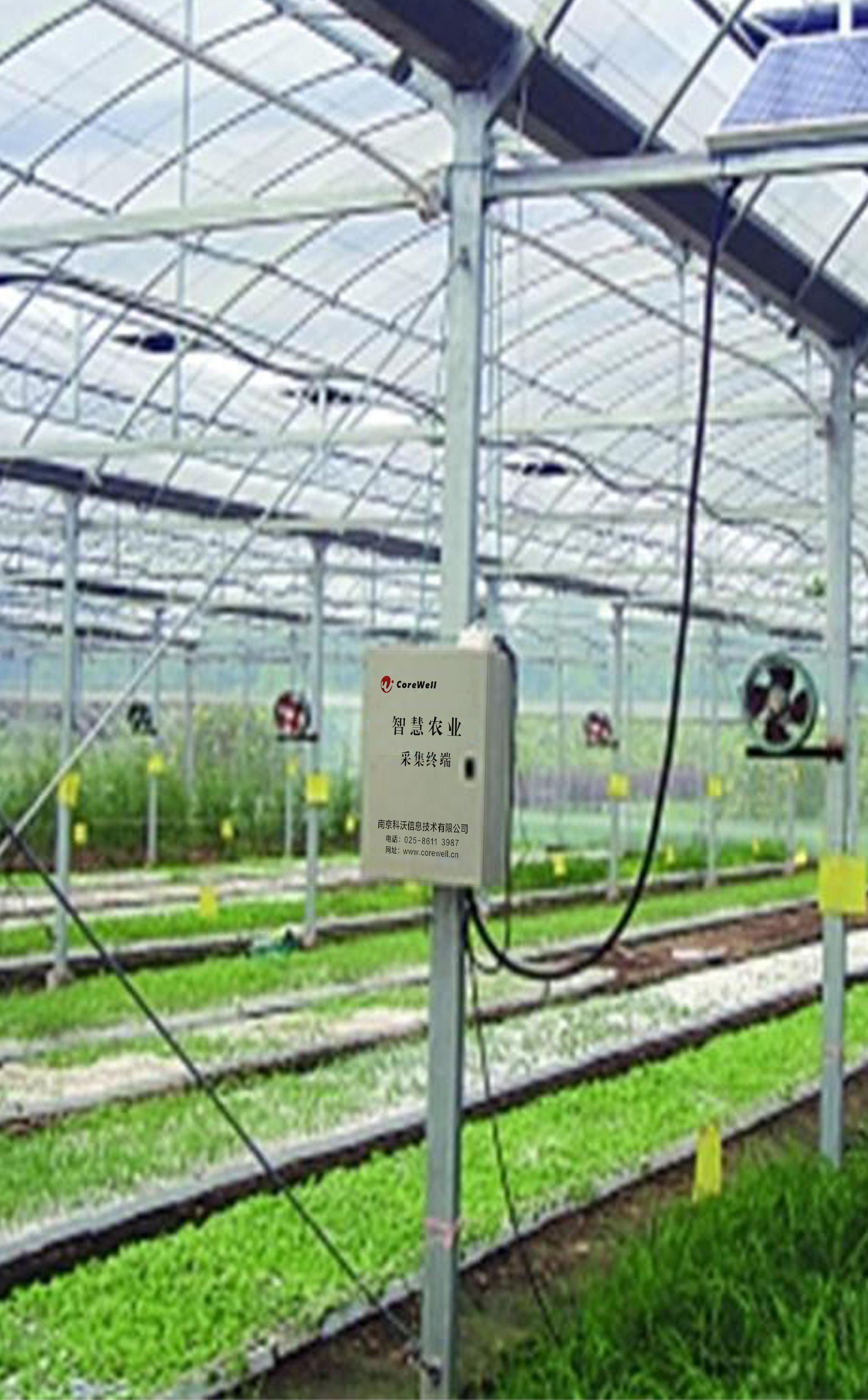 智能温室采集控制系统