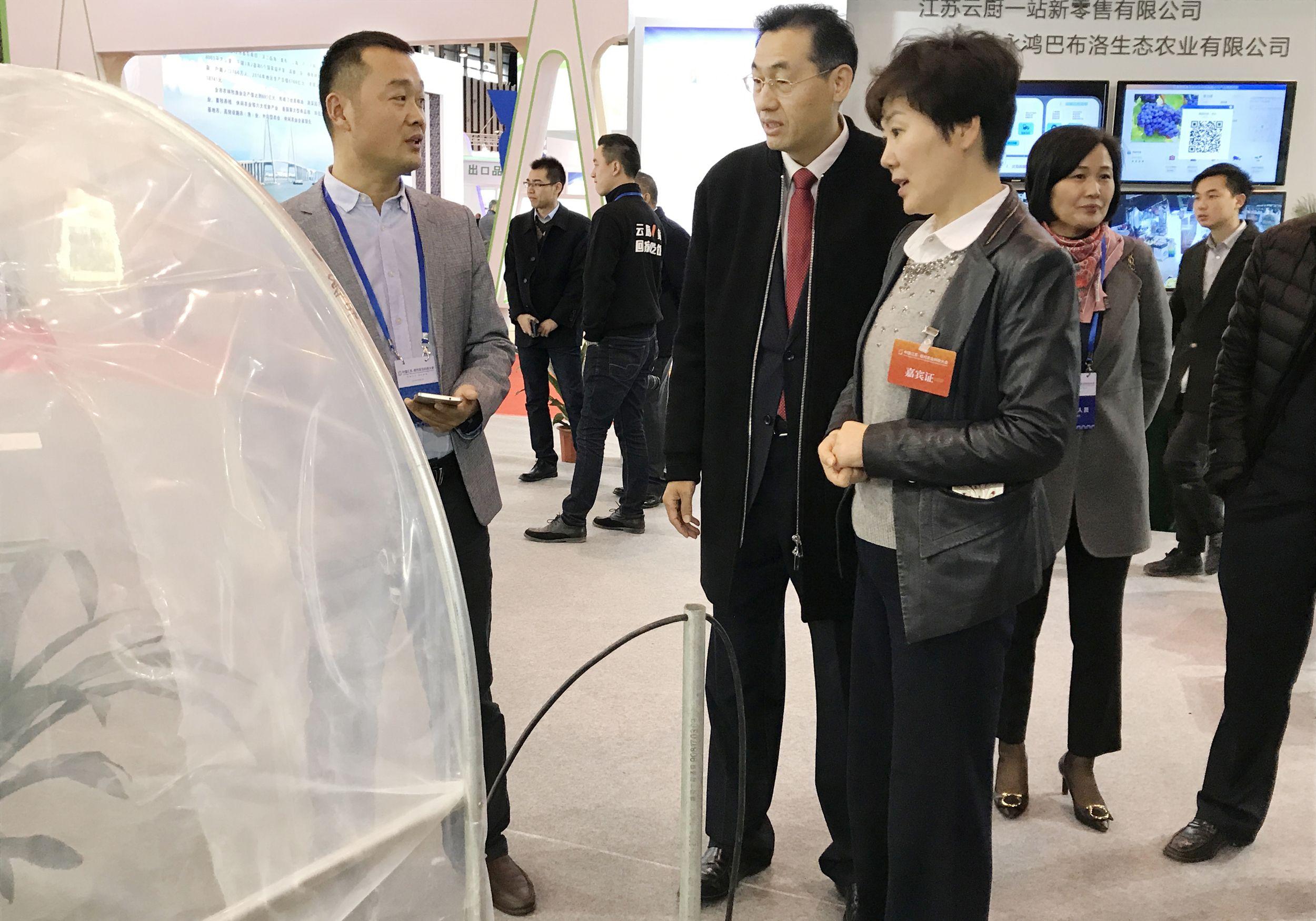 南京副市长华静听取苗总汇报工作